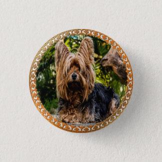 Bóton Redondo 2.54cm Terrier marrom e preto de Yorkshire adorável