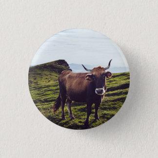 Bóton Redondo 2.54cm Vaca bovina na paisagem bonita