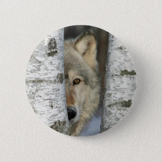 Bóton Redondo 5.08cm Abotoe com a foto do lobo cinzento em algumas