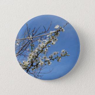 Bóton Redondo 5.08cm Ameixa de florescência contra o céu. Toscânia,
