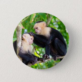 Bóton Redondo 5.08cm Amor do macaco