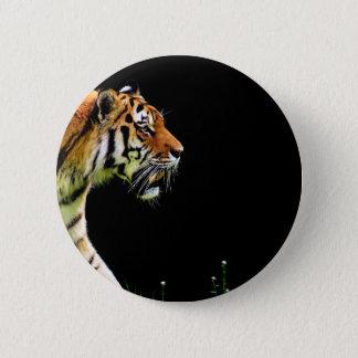 Bóton Redondo 5.08cm Aproximação do tigre - trabalhos de arte do animal
