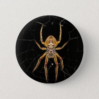 Bóton Redondo 5.08cm Aranha macro Colômbia do inseto