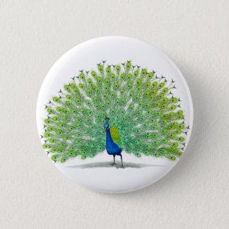 Bóton Redondo 5.08cm Arte magnífica do pavão