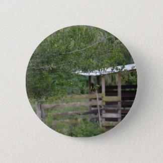 Bóton Redondo 5.08cm árvore e foto velha de florida do celeiro