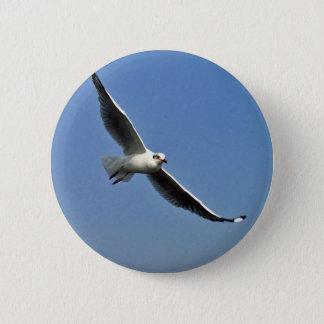 Bóton Redondo 5.08cm As gaivotas são pássaros bonitos