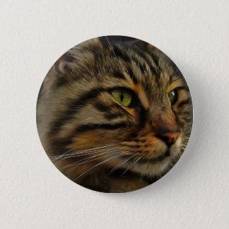 Bóton Redondo 5.08cm Aslan o gato de gato malhado de cabelos compridos