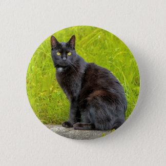 Bóton Redondo 5.08cm Assento do gato preto exterior