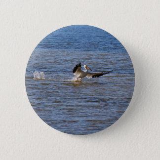 Bóton Redondo 5.08cm Aterragem do pelicano