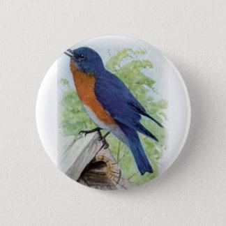 Bóton Redondo 5.08cm Bluebird