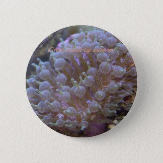 Bóton Redondo 5.08cm Botão #4 das coleções do recife