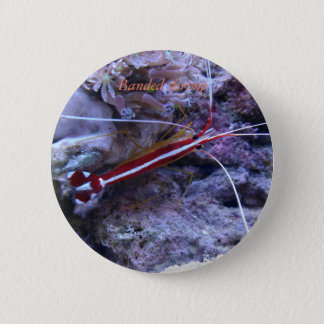 Bóton Redondo 5.08cm Botão #5 da coleção do recife