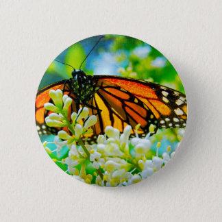 Bóton Redondo 5.08cm Botão alaranjado da foto do fim-acima da borboleta