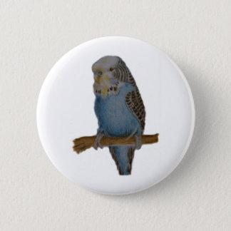 Bóton Redondo 5.08cm Botão azul da arte do budgie