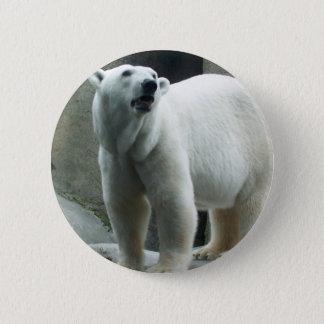 Bóton Redondo 5.08cm Botão branco do urso polar