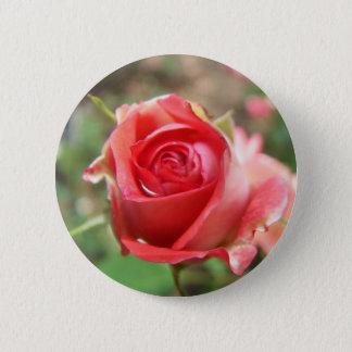 Bóton Redondo 5.08cm Botão cor-de-rosa