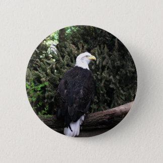 Bóton Redondo 5.08cm Botão da águia americana