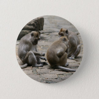 Bóton Redondo 5.08cm Botão da reunião do macaco