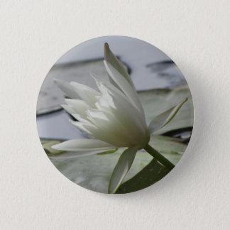 Bóton Redondo 5.08cm Botão de Waterlily