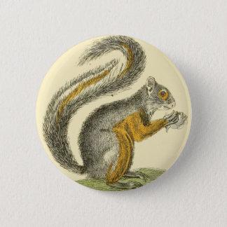 Bóton Redondo 5.08cm Botão do esquilo do vintage