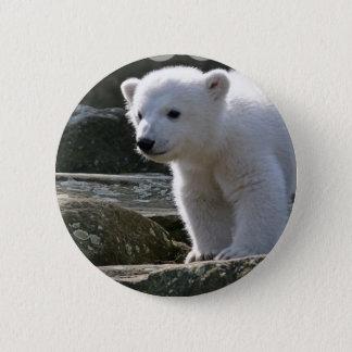 Bóton Redondo 5.08cm Botão do urso polar do bebê