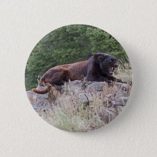 Bóton Redondo 5.08cm Botão preto do leopardo