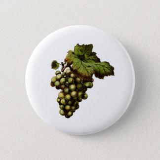 Bóton Redondo 5.08cm Botão verde das uvas