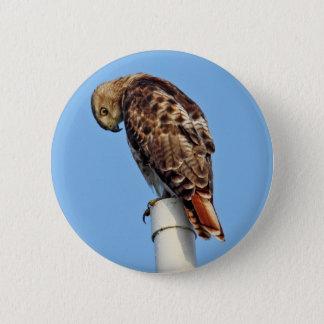Bóton Redondo 5.08cm Botão Vermelho-Atado do falcão