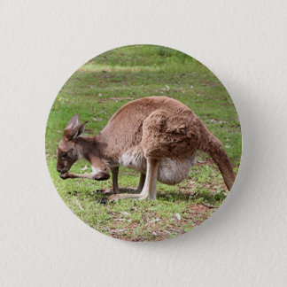 Bóton Redondo 5.08cm Canguru, interior Austrália