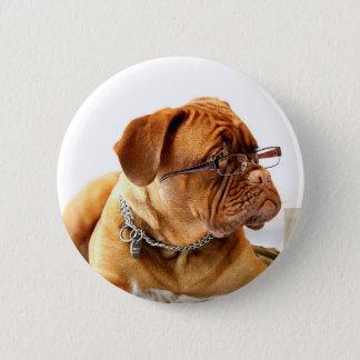 Bóton Redondo 5.08cm cão de dogue de Bordéus que veste vidros