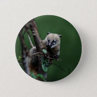 Bóton Redondo 5.08cm Coati pequeno dos patifes - lemur