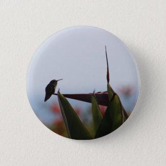 Bóton Redondo 5.08cm Colibri no botão da flor do Pássaro--Paraíso