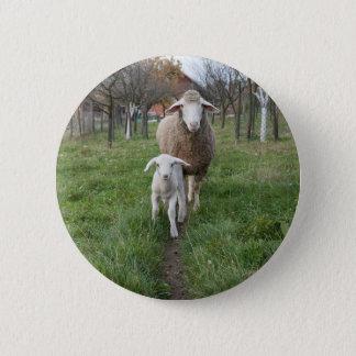 Bóton Redondo 5.08cm Cordeiro e carneiros
