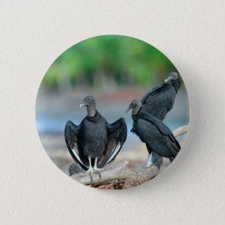 Bóton Redondo 5.08cm Costa americana preta de Panamá dos abutres