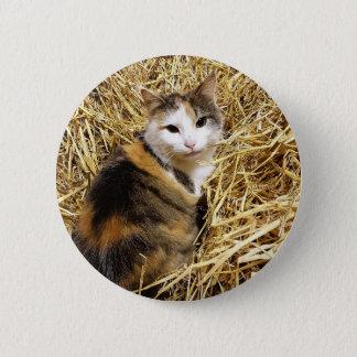 Bóton Redondo 5.08cm Crachá do Pin da foto do gato da fazenda
