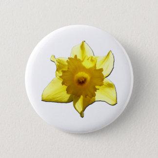 Bóton Redondo 5.08cm Daffodil 1,0 da trombeta amarela