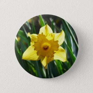 Bóton Redondo 5.08cm Daffodil amarelo 02.2_rd