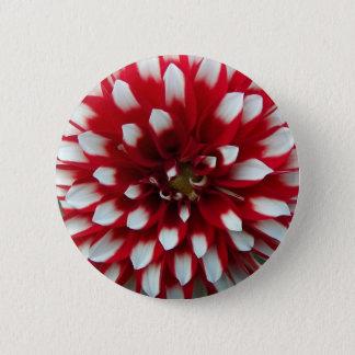 Bóton Redondo 5.08cm Dália vermelha e branca floral