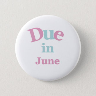 Bóton Redondo 5.08cm Dívida cor-de-rosa em junho