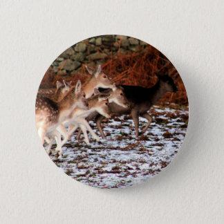 Bóton Redondo 5.08cm Em suas marcas (cervos)