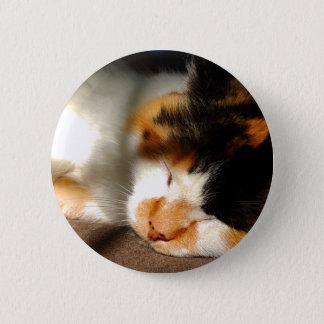 Bóton Redondo 5.08cm Exposição ao sol do gato de chita