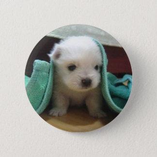 Bóton Redondo 5.08cm filhote de cachorro maltês