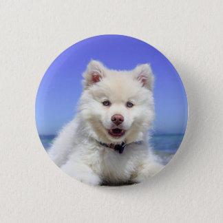Bóton Redondo 5.08cm Filhote de cachorro ronco branco com olhos azuis