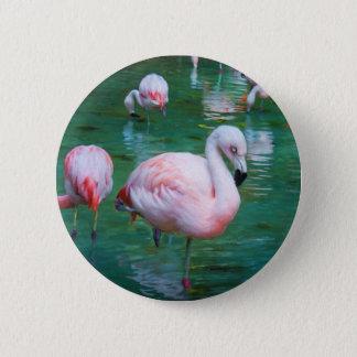 Bóton Redondo 5.08cm Flamingos cor-de-rosa