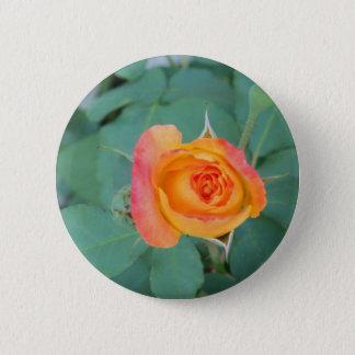 Bóton Redondo 5.08cm flor alaranjada do rosa amarelo