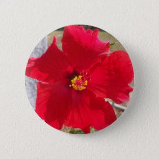 Bóton Redondo 5.08cm flor tropical vermelha brilhante do hibiscus