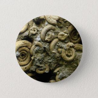Bóton Redondo 5.08cm fósseis encaixados dos caracóis