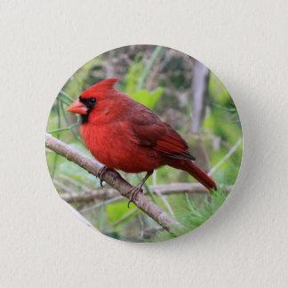 Bóton Redondo 5.08cm Foto cardinal do norte