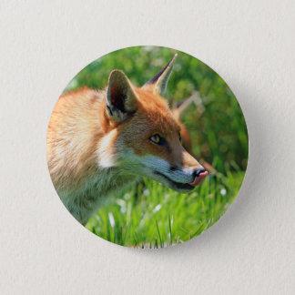 Bóton Redondo 5.08cm Fox