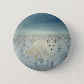 Bóton Redondo 5.08cm Fox ártico